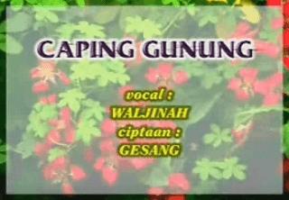 Lirik Lagu Caping Gunung