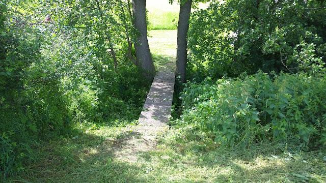 eine der Fußgängerbrücken über den Bach oder eher das Wildwuchsdickicht (c) by Joachim Wenk
