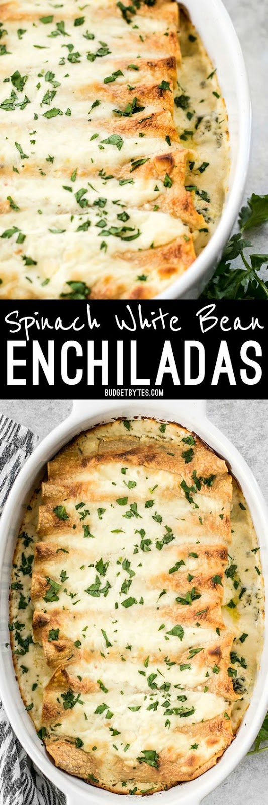 SPINACH WHITE BEAN ENCHILADAS WITH PEPPER JACK SAUCE   #DESSERTS #HEALTHYFOOD #EASYRECIPES #DINNER #LAUCH #DELICIOUS #EASY #HOLIDAYS #RECIPE #SPECIALDIET #WORLDCUISINE #CAKE #APPETIZERS #HEALTHYRECIPES #DRINKS #COOKINGMETHOD #ITALIANRECIPES #MEAT #VEGANRECIPES #COOKIES #PASTA #FRUIT #SALAD #SOUPAPPETIZERS #NONALCOHOLICDRINKS #MEALPLANNING #VEGETABLES #SOUP #PASTRY #CHOCOLATE #DAIRY #ALCOHOLICDRINKS #BULGURSALAD #BAKING #SNACKS #BEEFRECIPES #MEATAPPETIZERS #MEXICANRECIPES #BREAD #ASIANRECIPES #SEAFOODAPPETIZERS #MUFFINS #BREAKFASTANDBRUNCH #CONDIMENTS #CUPCAKES #CHEESE #CHICKENRECIPES #PIE #COFFEE #NOBAKEDESSERTS #HEALTHYSNACKS #SEAFOOD #GRAIN #LUNCHESDINNERS #MEXICAN #QUICKBREAD #LIQUOR