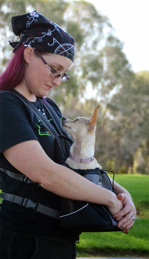 96939d5555c3 The Dog Geek  Product Review  Outward Hound Poochpouch Dog Carrier