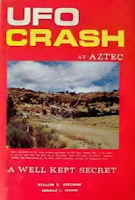 UFO Crash at Aztec By Bill Steinman