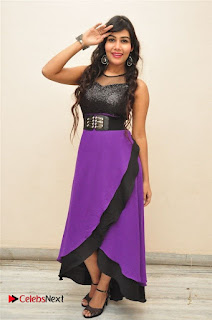 Telugu Actress Rachana Smith Stills at Money is Honey Audio Release  0040.jpg