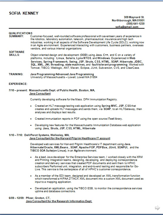 java consultant sample resume format in word free download