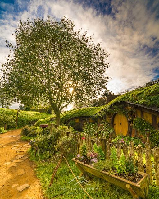 Golden light over Hobbiton hobbit hole