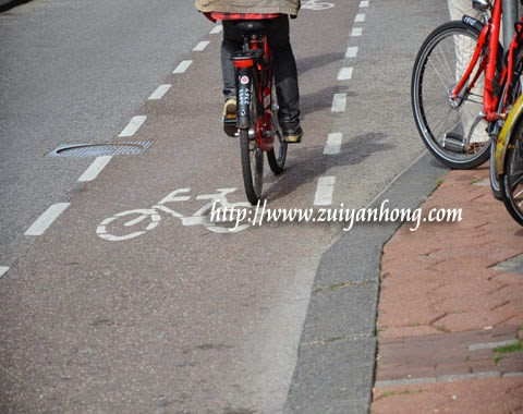 Amsterdam Bicycle Lane
