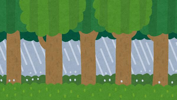雨が降る森のイラスト(背景素材)