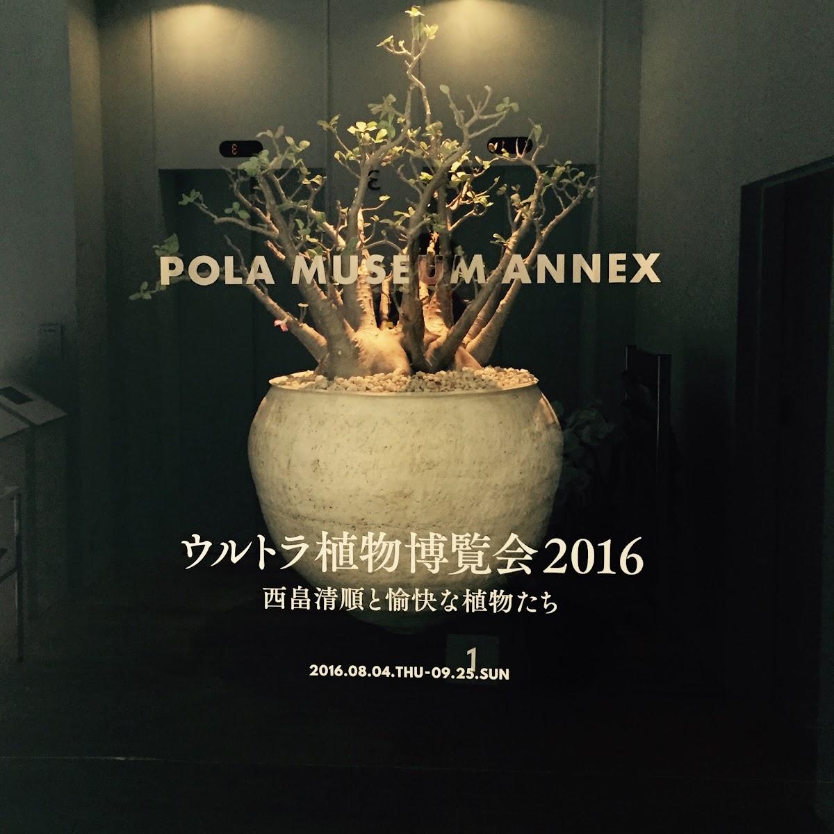 「ウルトラ植物博覧会2016」 西畠清順と愉快な植物たち | ポーラ ミュージアム | 2016-08 【鑑賞メモ】
