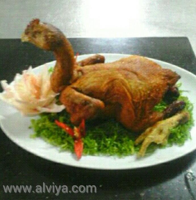 Download 640 Gambar Lucu Ayam Penyet Terbaru
