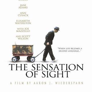 Sensation of Sight 2006 poster