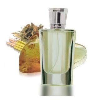 Distribuidor perfumes Gilca