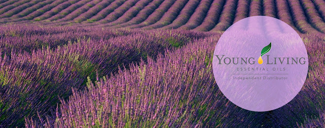 https://2.bp.blogspot.com/-RlDZP93_g94/WJDNA4OAwOI/AAAAAAAAt-c/v3rjTFPaAOoEbIkc0o19UMXGfHRwS38ywCLcB/s640/lavender%2BFB%2Bcircle%2Blogo.jpg
