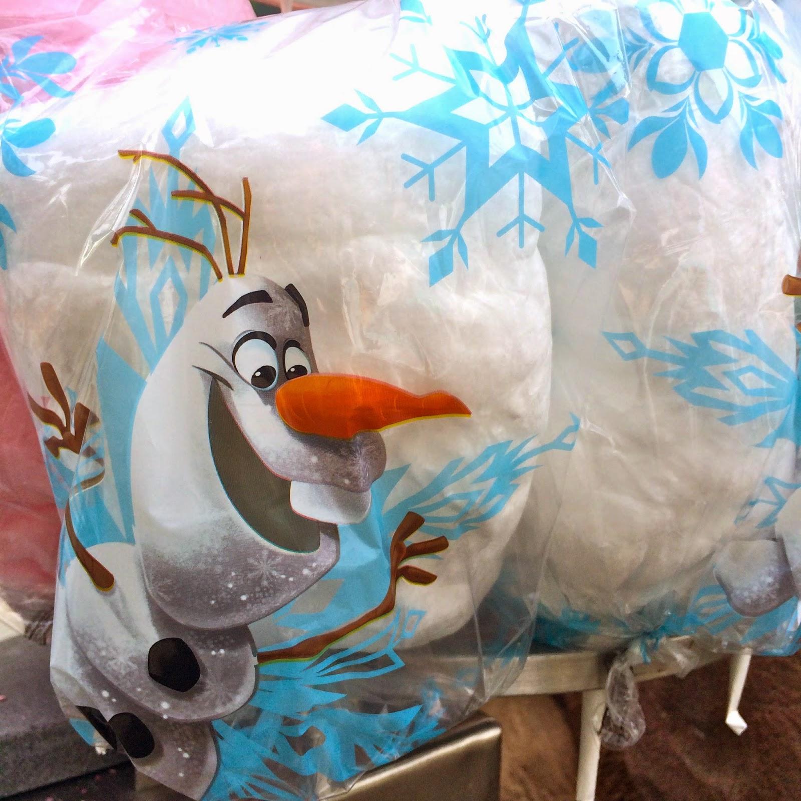 Disney Sisters Frozen Summer Fun Guide To Walt Disney World