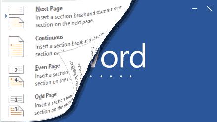 Cara Membuat Variasi Halaman Dengan Section Break Dokumen Word 2016