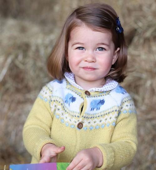 Royal Family Knitting Patterns