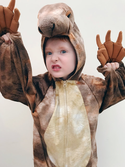 Little boy dressed as a dinosaur showing the claws on the sleeve and growling