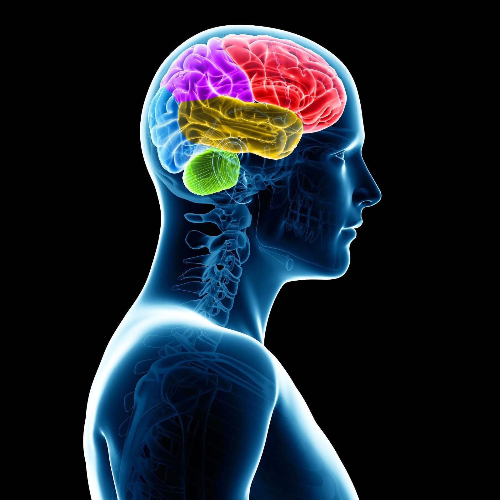 NYC Psychotherapy Blog: Josephine Ferraro, LCSW: NYC ...