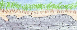 Pembentukan Tanah