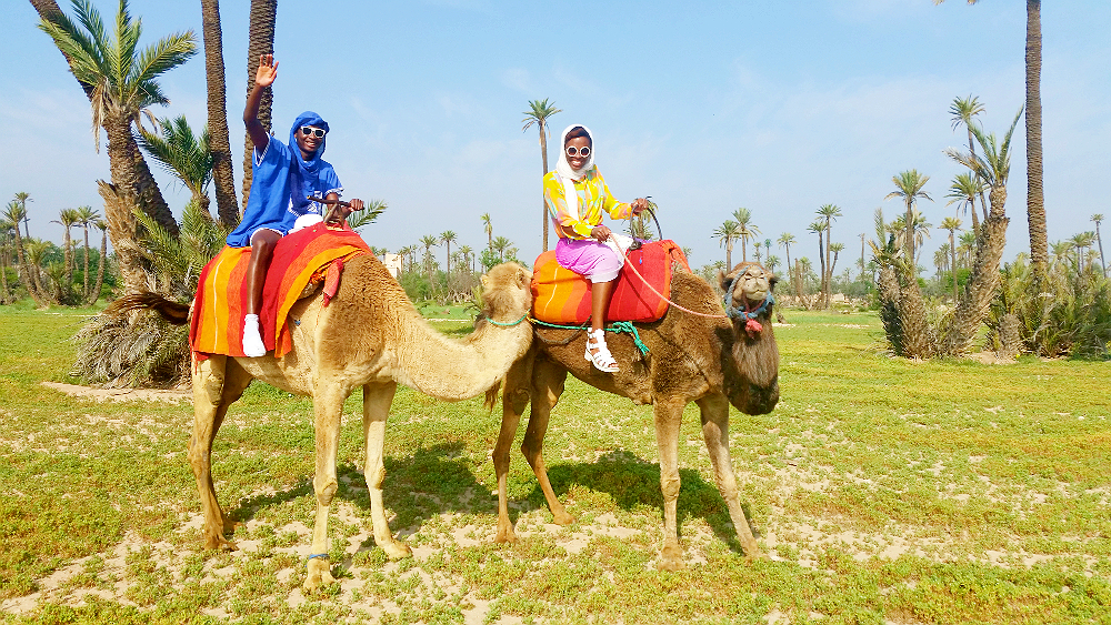Camel Trekking - Things to do in Marrakesh