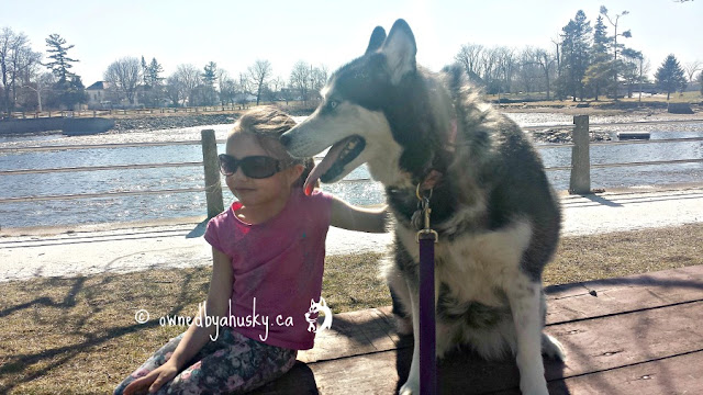 Family - Kids, Dogs, And The Sunny Outdoors