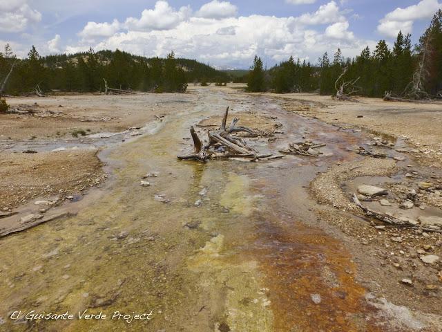 Back Basin en Norris Geyser Basin - Yellowstone, por El Guisante Verde Project