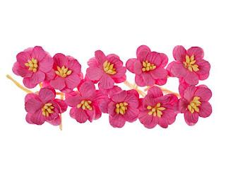https://www.essy-floresy.pl/pl/p/Kwiat-wisni%2C-ciemny-rozowy/187
