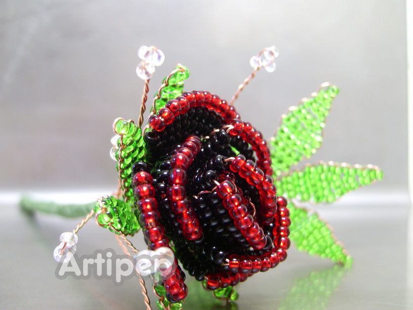 rosa negra y roja