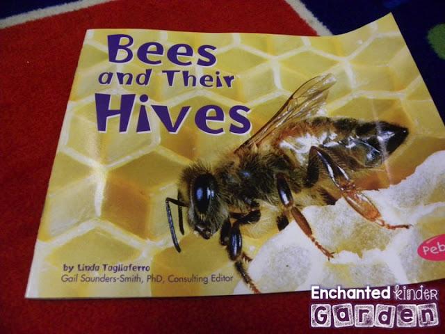 Bee book for kindergarten