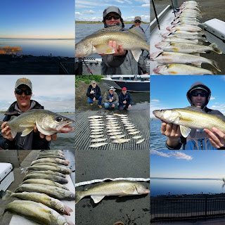 Moses Lake Walleye Fishing Guides
