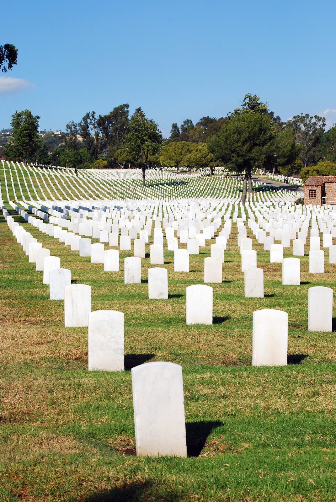 The difference between Memorial Day, Veterans Day, and ...