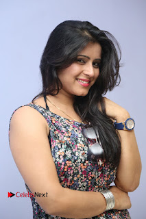 Actress Manisha Tagore Pictures at Hyderabad Love Story Platinum Disc Function  0074.JPG