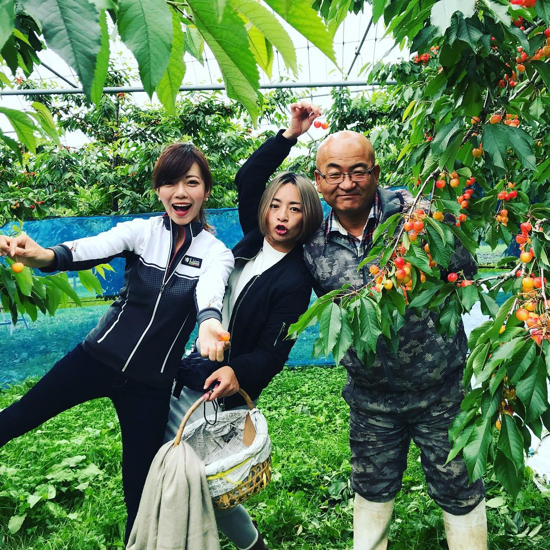 仁木 紅果園
