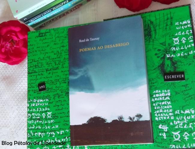 Poemas-ao-desabrigo, Raul-de-Taunay