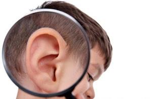 8 Nutrisi Penting untuk Menjaga Kesehatan Pendengaran agar Optimal