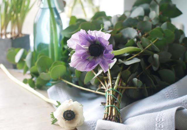 Franske anemoner og Eucalyptus