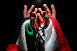 Palestina updetails.com
