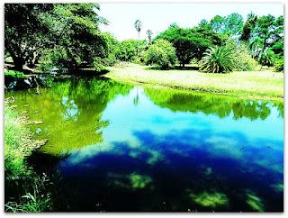Lago do Parque Marinha do Brasil
