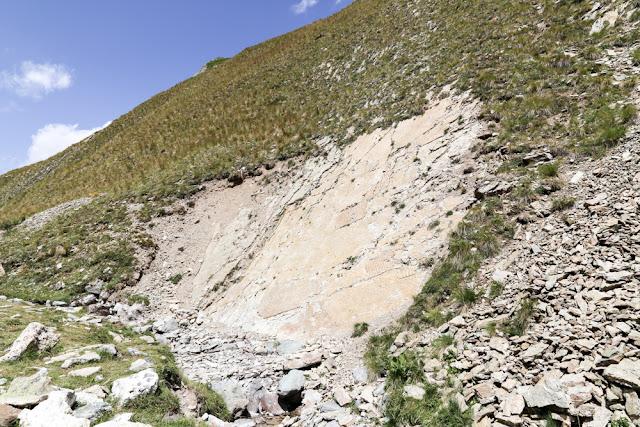 TICINOSUCHUS FEROX dinosauro gardetta fossili impronte