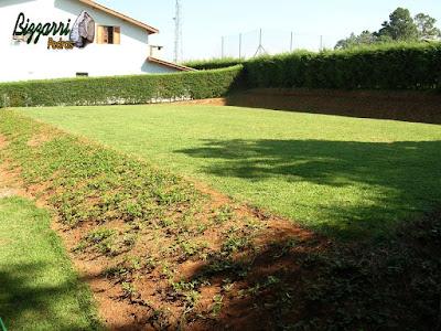 Construção do campo de futebol com o gramado de grama esmeralda, em volta a cerca viva com cipreste e nos taludes o plantio de grama amendoim em casa em condomínio em Atibaia-SP.