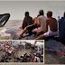 ใหญ่มาก!! ชาวบ้านหลายพันคนพยายามช่วยเหลือปลาวาฬยักษ์ 17 ตัน ที่ว่ายมาติดอ่าว และเกยตื้นบนชายฝั่ง ช่วยเหลือตัวเองไม่ได้ เพื่อผลักให้วาฬกลับสู่ทะเล (มีคลิป)
