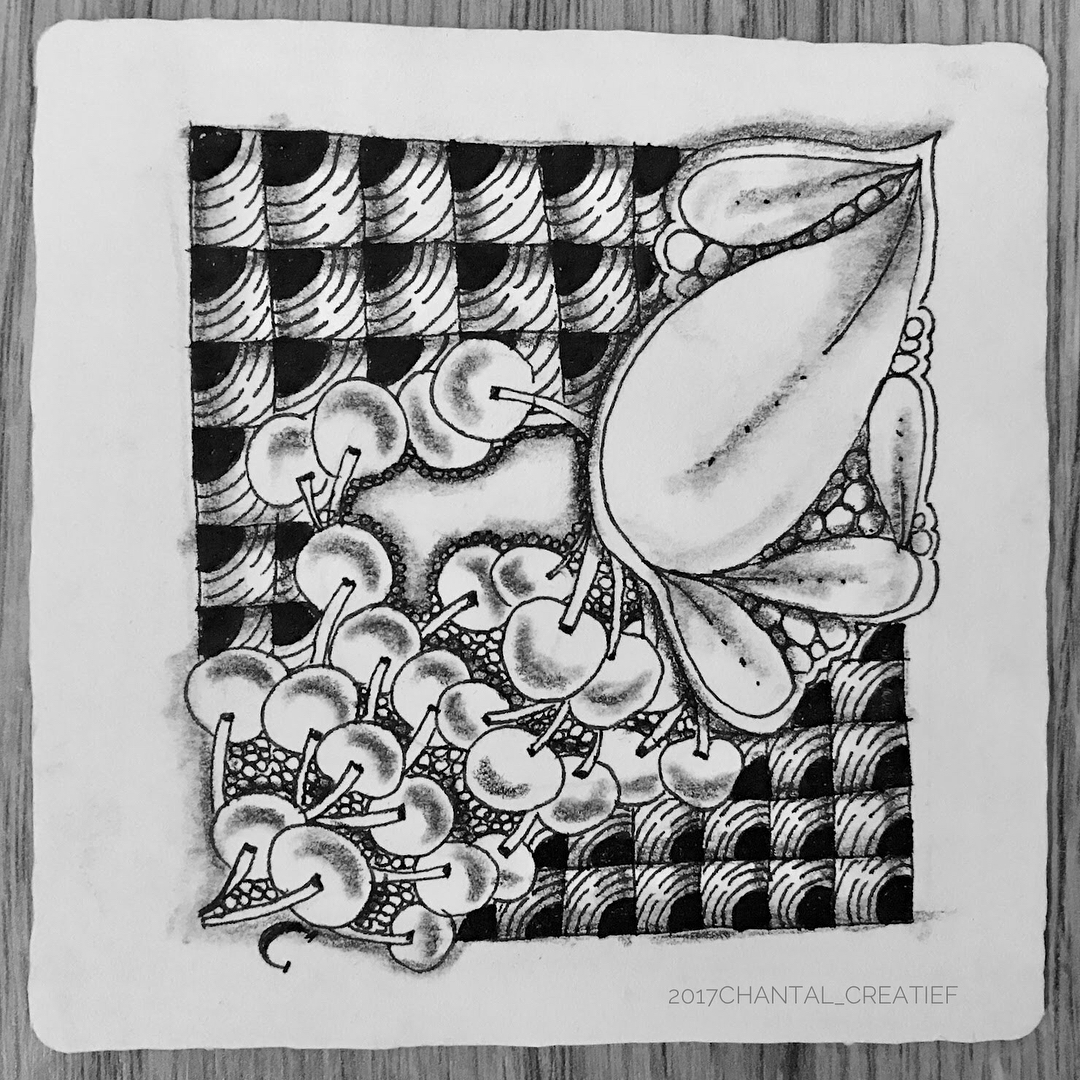 05-Chantal-Hand-Drawn-Zentangle-Shapes-Illustrations-www-designstack-co