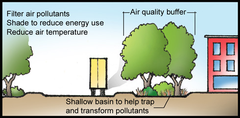 How Trees Prevent Air Pollution