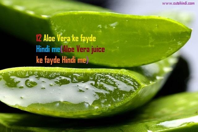 12 Aloe Vera ke fayde Hindi me(Aloe Vera juice ke fayde Hindi me)