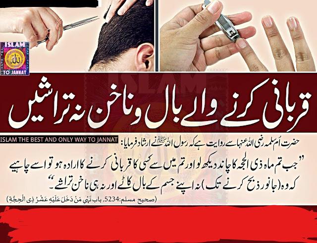 قربانی کرنے والوں کیلئے ناخن اور بال وغیرہ کا حکم: