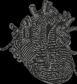 corazón dibujado de forma artística