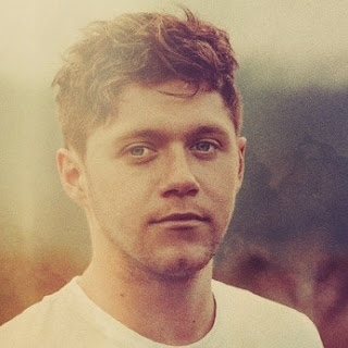 Terjemahan Lirik Lagu Niall Horan - On The Loose