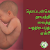 What is the umbilical cord?