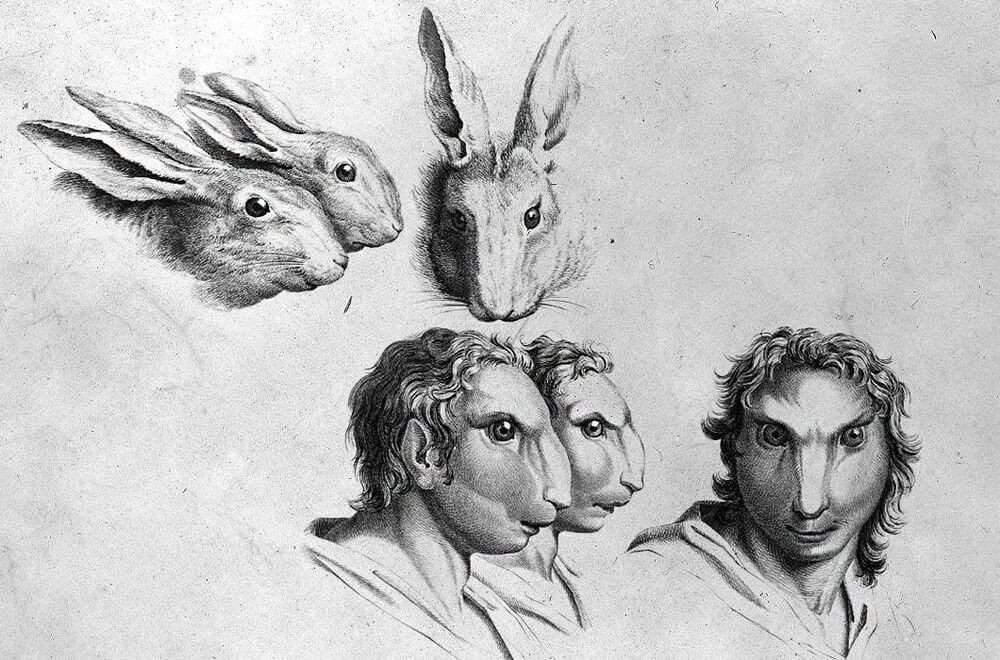 15-Rabbit-Animal-Transformations-Drawings-from-the-1600s-www-designstack-co