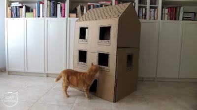 Como hacer una casa para gatos con cartón