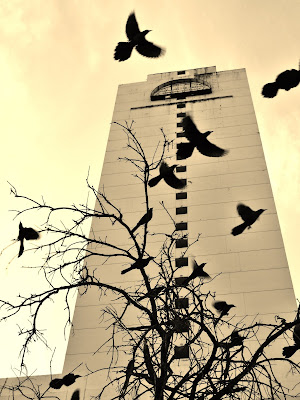 Former Day's Inn (in sepia) with black birds (2012)