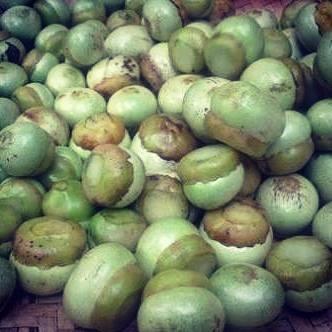 buah kalangkala hijau